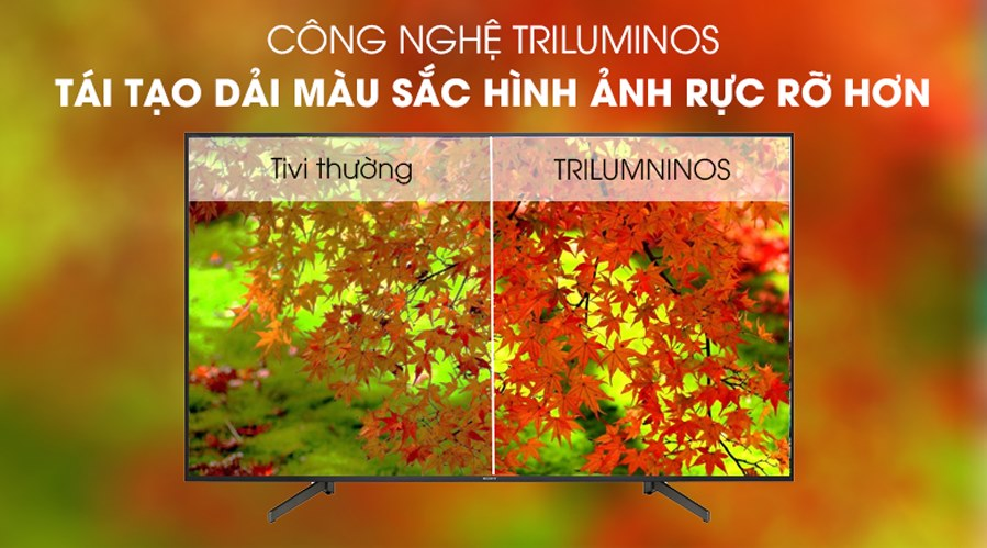 smart-Tivi-sony-4k-49-inch-KD-49X8000G-cong-nghe-Triluminos