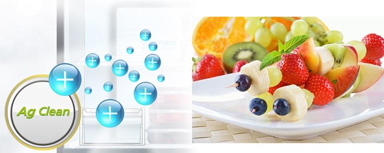 Tủ Lạnh Panasonic NR-DZ600GKVN Inverter 550 Lít, diệt khuẩn Ag clean