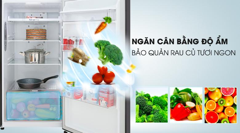 Tủ lạnh LG GN-D315BL 315 lít inverter, ngăn cân bằng độ ẩm