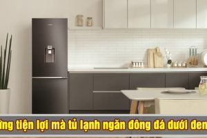 Tủ lạnh ngăn đá dưới đem lại những lợi ích gì?