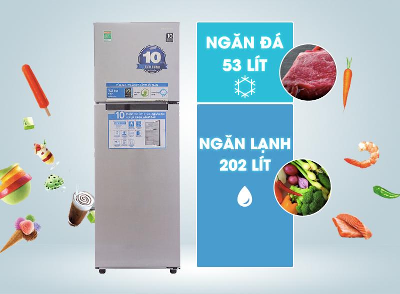 Tủ lạnh Samsung RT25HAR4DSA/SV 255 lít