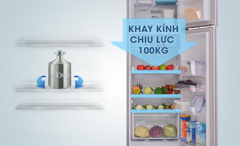 Tủ lạnh Samsung RT25HAR4DSA/SV 255 lít, khay kính chịu lực