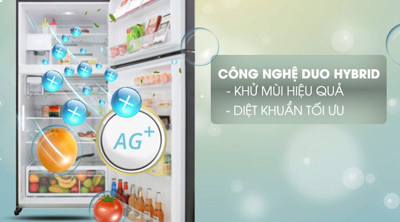 Tủ lạnh Toshiba GR-AG58VA XK Inverter 555 lít, diệt khuẩn