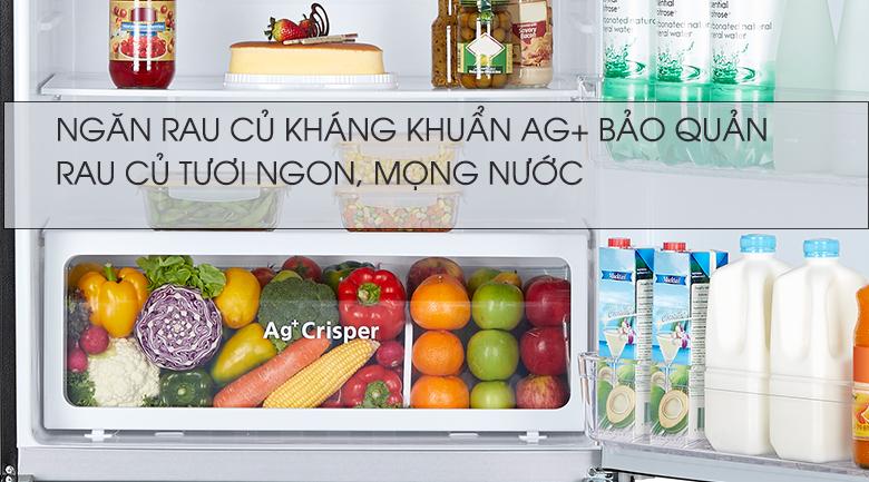 Tủ Lạnh TOSHIBA GR-AG58VA(X) Inverter 555 Lít, ngăn rau củ rộng rãi