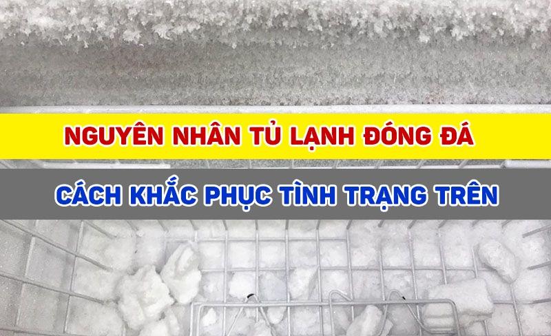 Nguyên nhân và cách khắc phục ngăn mát tủ lạnh bị đóng đá