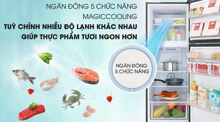thinh-phat-Các chức năng cấp đông mềm trên tủ lạnh Aqua trong ngăn đông